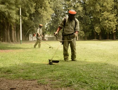 Realizan tareas de limpieza en el campo Amat