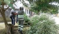 Los equipos de Defensa Civil, Seguridad y Desarrollo Social del Municipio de Esteban Echeverría, se encuentran trabajando desde anoche, en las distintas zonas del distrito que fueron afectadas por la caída de árboles y voladura de techos, por el temporal que registró fuertes lluvias y vientos en las localidades del Partido.