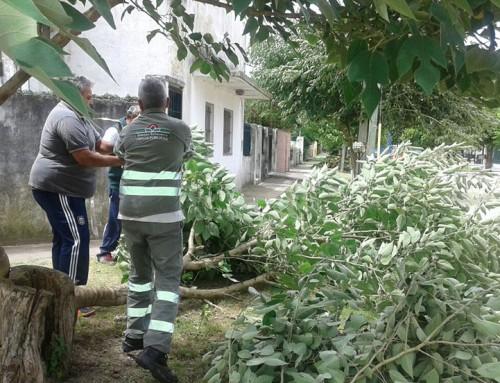 Equipos de emergencia del Municipio trabajan con damnificados por el temporal