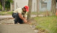 En el marco del Plan Integral de Refacción de 14 Instituciones Educativas, el Municipio de Esteban Echeverría renueva las veredas de la Escuela Secundaria 21 y del Centro de Formación Laboral N° 1, en Máximo Paz e Isla Trinidad, El Jagüel.