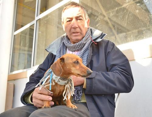 Más de 4 mil mascotas atendidas en operativos de vacunación y castraciones