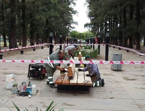 El municipio realiza tareas de mantenimiento en paseo AMAT