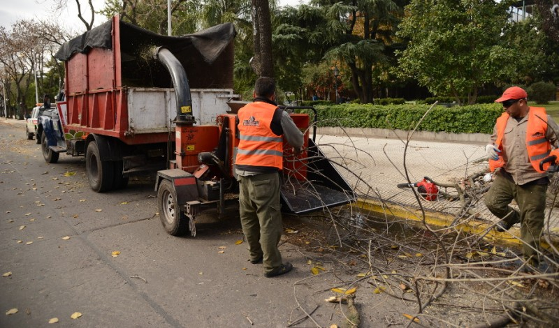 Con el objetivo de proteger las especies arbóreas y mantener ordenado el espacio público, el Municipio de Esteban Echeverría comenzará, a partir de 1 de mayo y hasta el 31 de agosto, las tareas de poda correctiva en todas las calles del distrito.