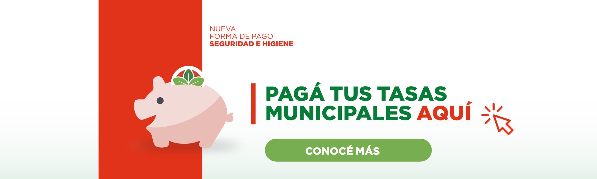 Pagá tus tasas municipales