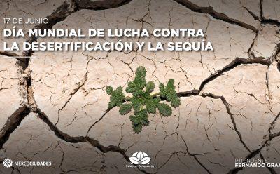 17 de junio – Día Mundial contra la desertificación